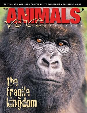 medium_Animals_Rights_Activists.jpg