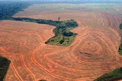 deforestationamazonie.jpg