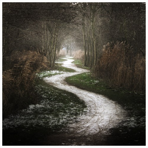 path pic.jpg