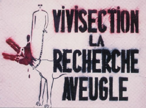 vivisectionrechercheavebg7.jpg